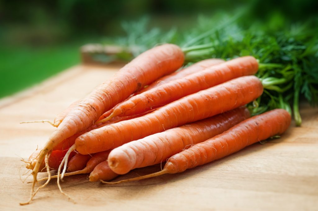 Carrot seed oil in skincare
