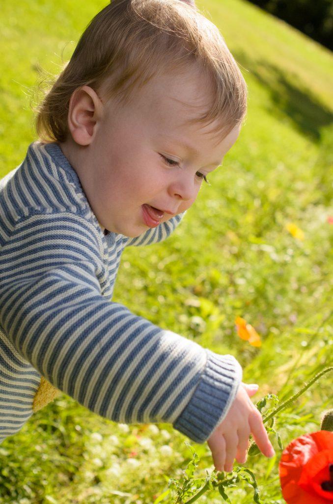 Jonah finds a poppy!