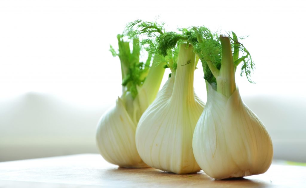 Fennel is traditionally used as a galactagogue