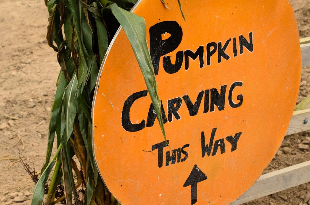 Pumpkin carving this way!