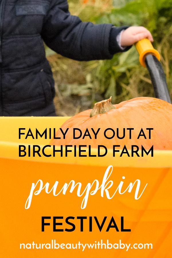 Family day out at Birchfield Farm Pumpkin Festival